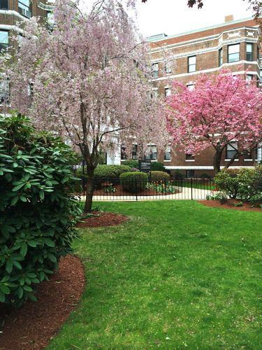 Spring May 2015 (4) B