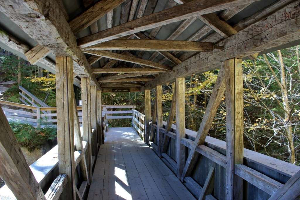 sentinel-bridge-2